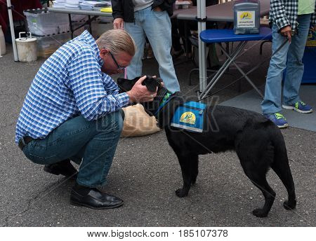 Toms River NJ USA -- May 6 2017--A man plays with a service dog at a street fair. Editorial Use Only