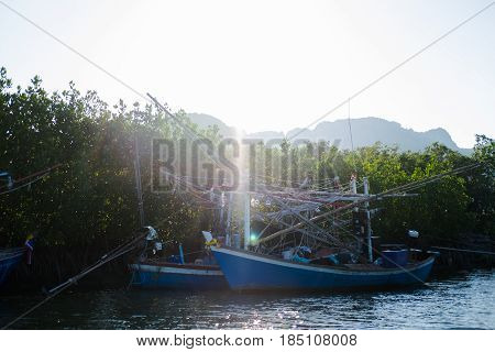 Wood Fishing Boat Anchor On Sea Get Ready For Trawl. Around This Place Filled Nature And Mangrove Fo