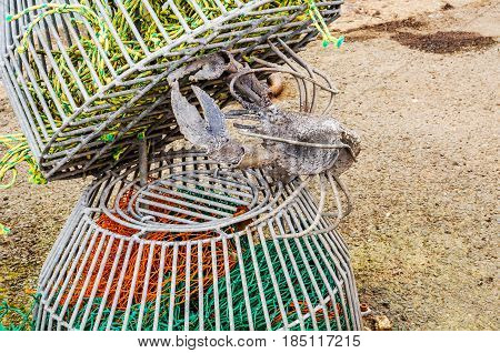 Original Ornament In A Fishing Port, An Iron Lobster In Lobster Baskets, Fishing Industry