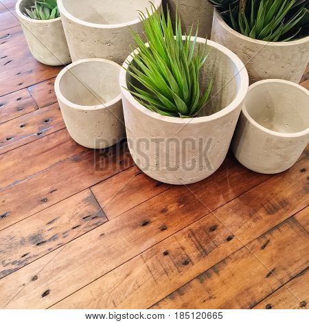 Decorative succulent plants in concrete pots on old wooden table.