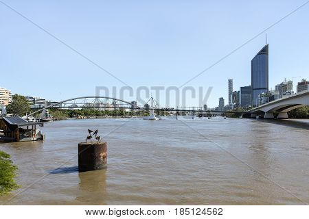 BRISBANE, AUSTRALIA - APRIL 29 2017: Brisbane CBD skyline and 1 William Street building with connecting Goodwill bridge and highway.