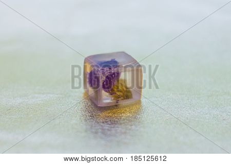 Crystal Made Of Epoxy Resin And Limonium