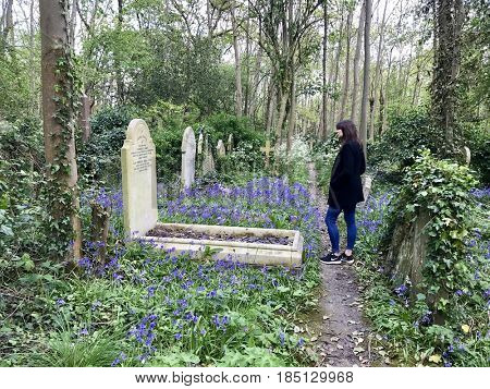 LONDON - APRIL 23, 2017: A woman reads a gravestone in Highgate Cemetery, Highgate, North London, UK. The cemetery is the resting place of many famous people including Karl Marx.