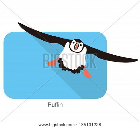 Iceland Bird, Flat Cute Puffin Flying, Vector Illustration