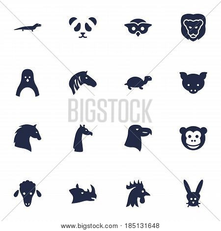 Set Of 16 Brute Icons Set.Collection Of Gecko, Aquila, Night Fowl And Other Elements.
