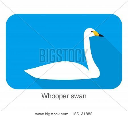 Whooper Swan, Cartoon Flat Icon, Vector Illustration