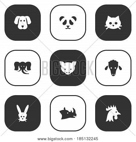 Set Of 9 Brute Icons Set.Collection Of Bear, Bunny, Rooster And Other Elements.