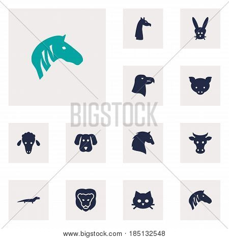 Set Of 12 Alive Icons Set.Collection Of Bunny, Steed, Camelopard And Other Elements.