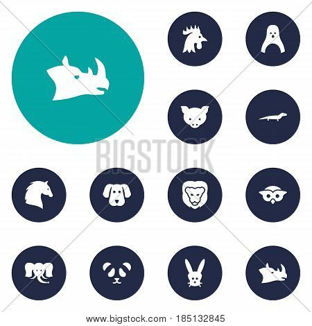 Set Of 12 Alive Icons Set.Collection Of Wildcat, Diver, Hound And Other Elements.