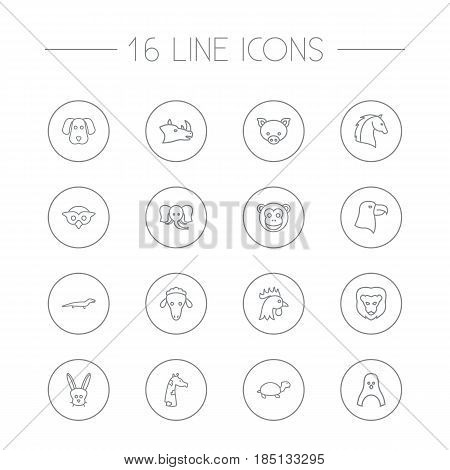 Set Of 16 Alive Outline Icons Set.Collection Of Eagle, Cock, Dog And Other Elements.
