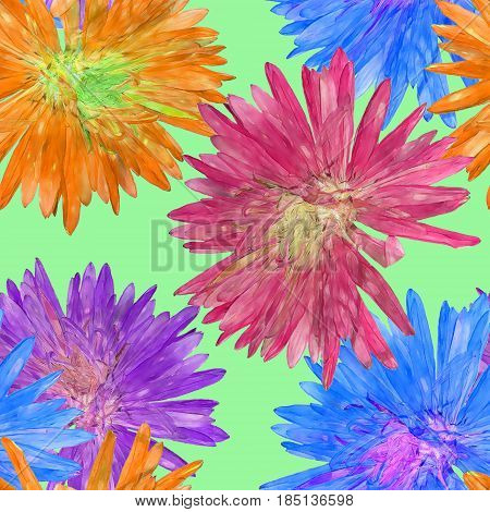 Aster Michaelmas daisy. Texture of flowers. Seamless pattern for continuous replicate.