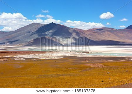 Salt flats and volcanic mountains of San Pedro de Atacama Chile South America. Colorful panorama landscape after the rain.