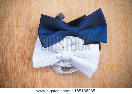 Blue and white bow tie . Symbol of elegance and fashion for men