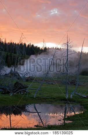 Sunrise cloudscape over steaming fumaroles next to Pelican Creek in Yellowstone National Park in Wyoming USA