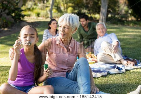 Grand mother looking at her granddaughter blowing bubbles in the park on a sunny day