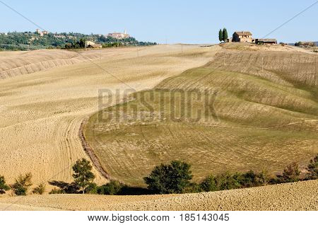 Autumn plowing and seeded fields in Crete Senesi, Tuscany, Italy