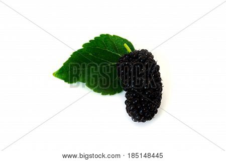 a pile of Mulberry with leaf Isolated on white background.