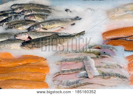 Fresh fish fillets on ice for sale at a market