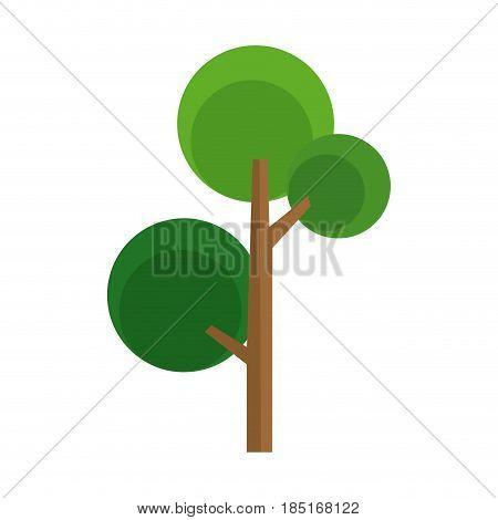 cartoon tree natural foliage woody image vector illustration