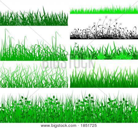 Grass Fringes