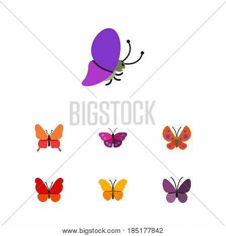 Flat Moth Set Of Danaus Plexippus, Violet Wing, Butterfly And Other Vector Objects. Also Includes Milkweed, Moth, Insect Elements.