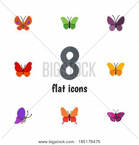 Flat Butterfly Set Of Butterfly, Danaus Plexippus, Violet Wing And Other Vector Objects. Also Includes Moth, Butterfly, Milkweed Elements.