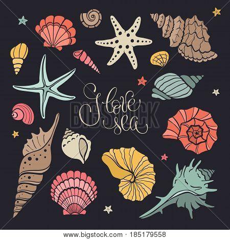 Hand drawn sea shells and stars collection. Marine illustration of ocean shellfish. Colorful seashells isolated on dark background.