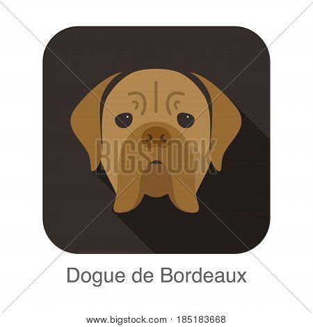 Dogue De Bordeaux Dog Face Portrait Flat Icon Design