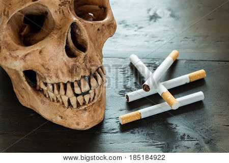 skull and tobacco concept danger of cigarette