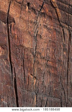Texture of old drying brown wood with cracks close-up