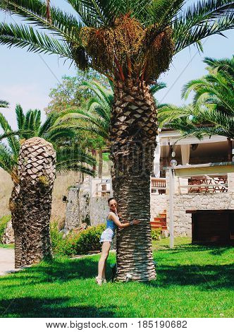 Beautiful young woman or teen age in denim shorts hugging palm tree in Greece. Vacation time.