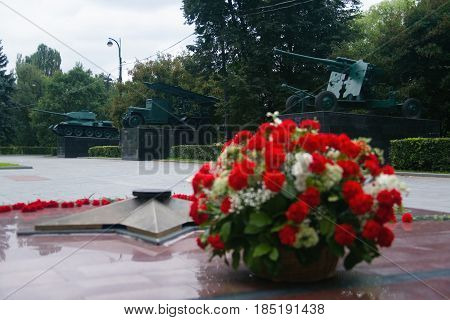 Moscow Russia July 28 2013: Flowers on the background of Soviet armament in Izmaylovsky Park.