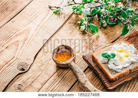 Toast with ricotta or farmers cheese and honey. Raw wood background with wooden tableware and apple blooming twigs. Selective focus