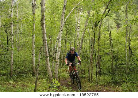 Mountainbiking durch dichten Wald