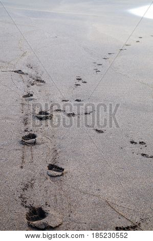 Silver sand with footsteps cast by some walker