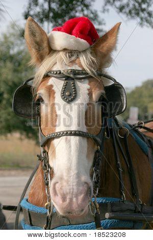 Merry horsemas