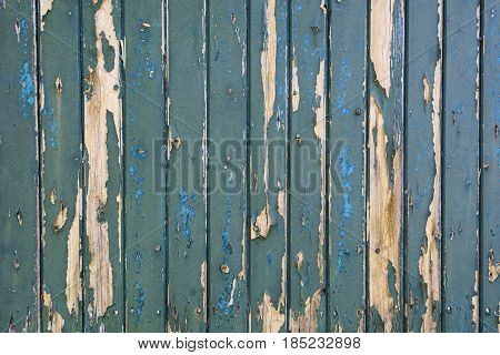 Green bladdered stable doors in a village