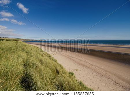 Lunan Bay beach, Scotland