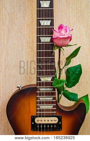 Part of the soundboard and fingerboard electric guitar with a pink rose
