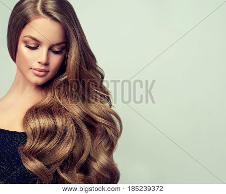 Brunette  girl with long  and   shiny wavy hair .  Beautiful  model with curly hairstyle .