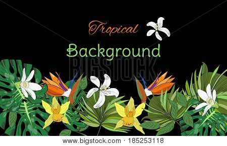 Hand drawn tropical background with tropical leaves, flowers on black background.