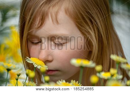 portrait of a little girl of seven years, sniffing daisy flowers in a botanical garden, eyes closed and eyelids lowered, looking at plants, long blond, wheaten hair