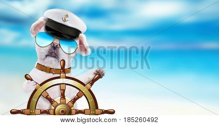 Dog sailor holds ship steering wheel in the sea background.