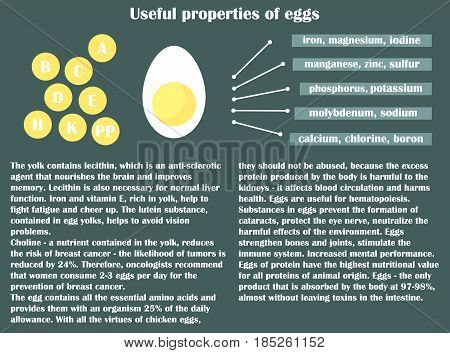 Infographic about the beneficial properties of egg. Half flat egg and text are isolated on a dark background. Helpful information. Vector Illustration