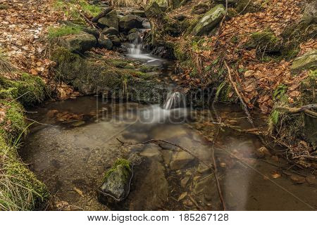 Creek in spring color forest in north Bohemia area
