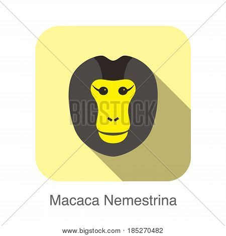 Cute Monkey Face, Macaca Nemestrina Flat Icon Design