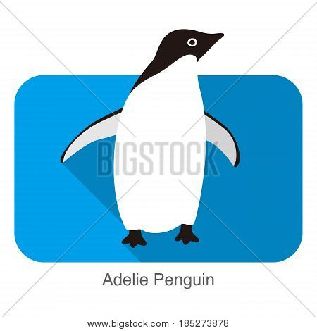 Adelie Penguin Standing, Penguin Series, Vector Illustration