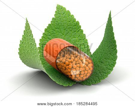 3D Ilustration. Capsule and leaves. Image with clipping path