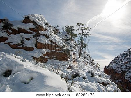 Winter View from Scouts Lookout on Angels Landing Hiking Trail in Zion National Park in Utah USA