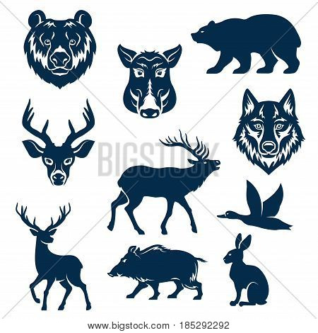 Wild animals and birds for hunting club design templates. Vector isolated icons or grizzly bear, aper boar, wolf and hare or rabbit, deer and elk or reindeer and duck for hunter open season badge
